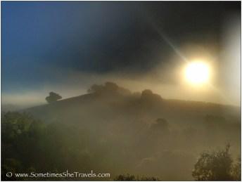How I love the morning light