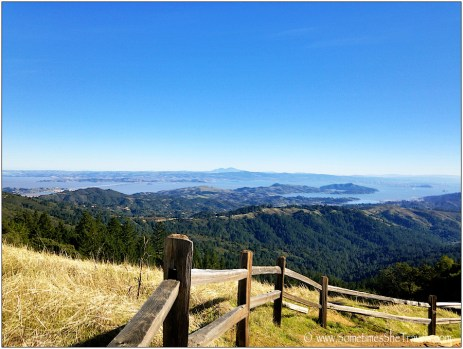 One of the clearest days I have ever seen in the Bay Area. We were able to see the snow-covered Sierra Nevadas from this spot.