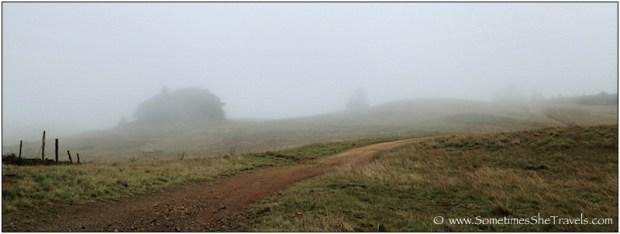 Dirt road through foggy green hills