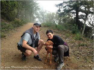 Man and woman hugging cute puppy on dirt trail in foggy forest.