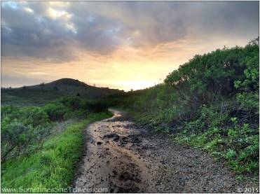 Wet trail toward sunset
