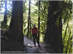 Laura between two trees that I think are Redwoods