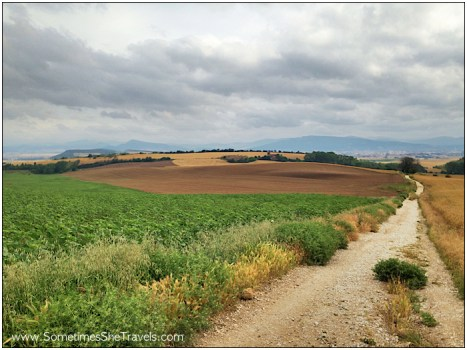 1040 - Looking back toward Pamplona and the Pyrenees. We've come so far!