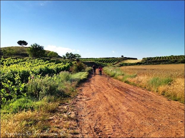 camino de santiago long straight red road
