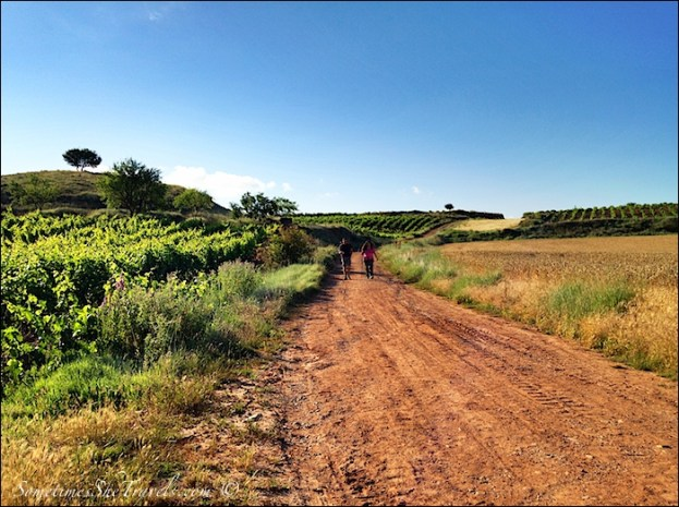 camino de santiago long straight red road