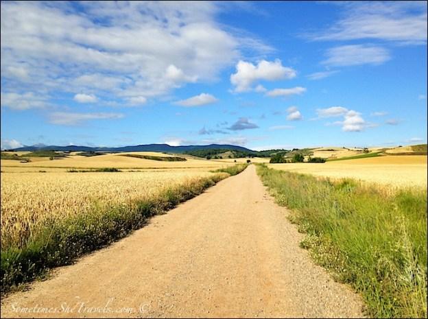 camino de santiago long straight road 2
