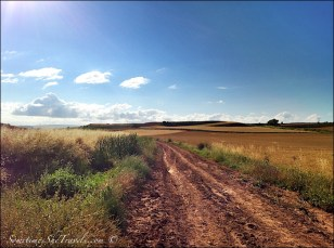 camino de santiago road through fields