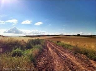 camino de santiago road through fields