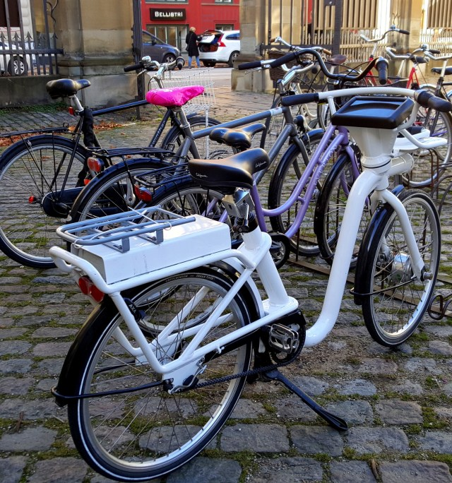 Danish bike rental