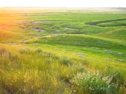 Grasslands National Park, SK, Canada
