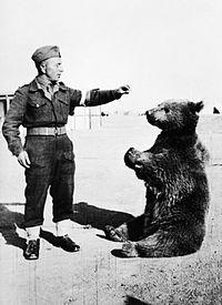 200px-wojtek_the_bear