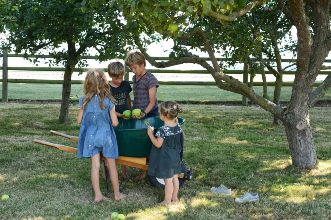 kids and wheelbarrow