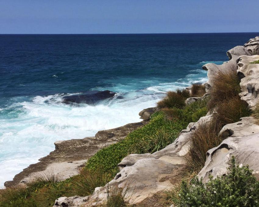 bondi to bronte coastal walk