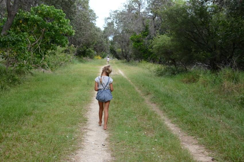 Ivy on path