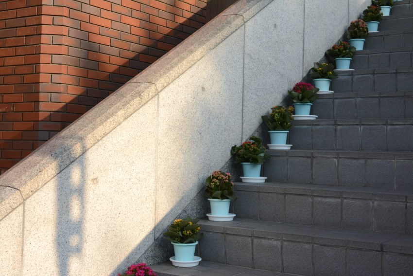 flowers on steps in Kyoto