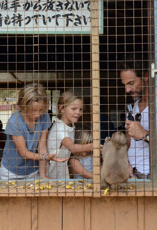Monkey Park feeding monkeys