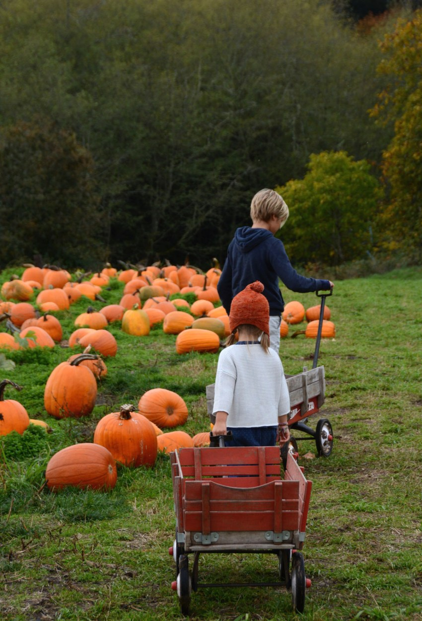 marlow-and-easton-at-the-pumpkin-patch