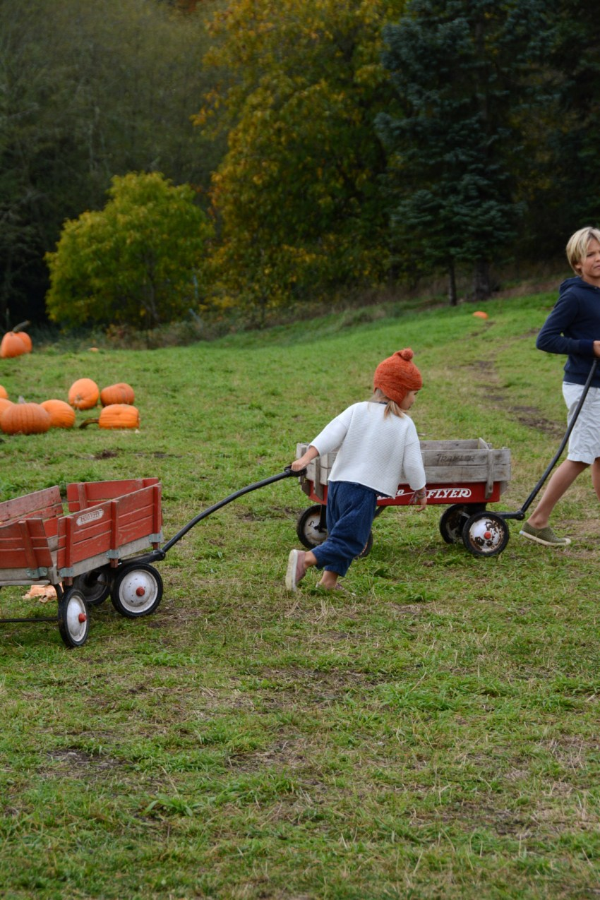 pulling-wagons