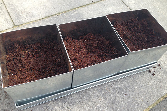 Keukenkruiden kweken - 4