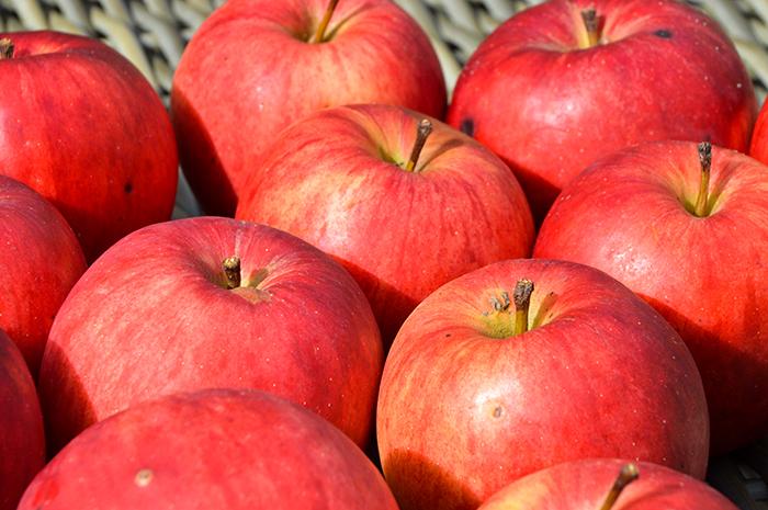 appels uit eigen tuin 1