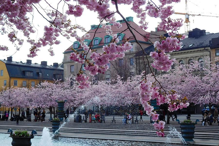 dingen die ik deed in april stockholm