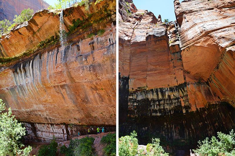 Zion national park Kayenta Trail