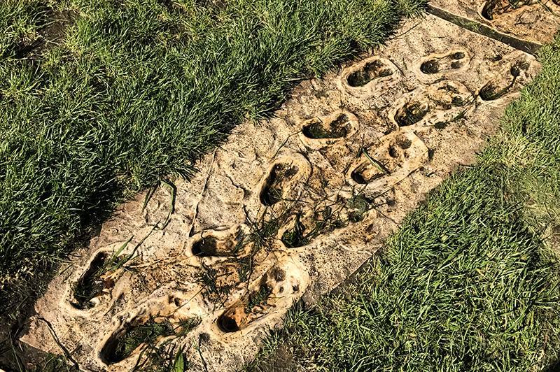 Het Blotevoetenpad Lieteberg - eerste mens