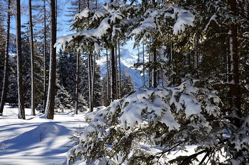 Lenzerheide skigebied