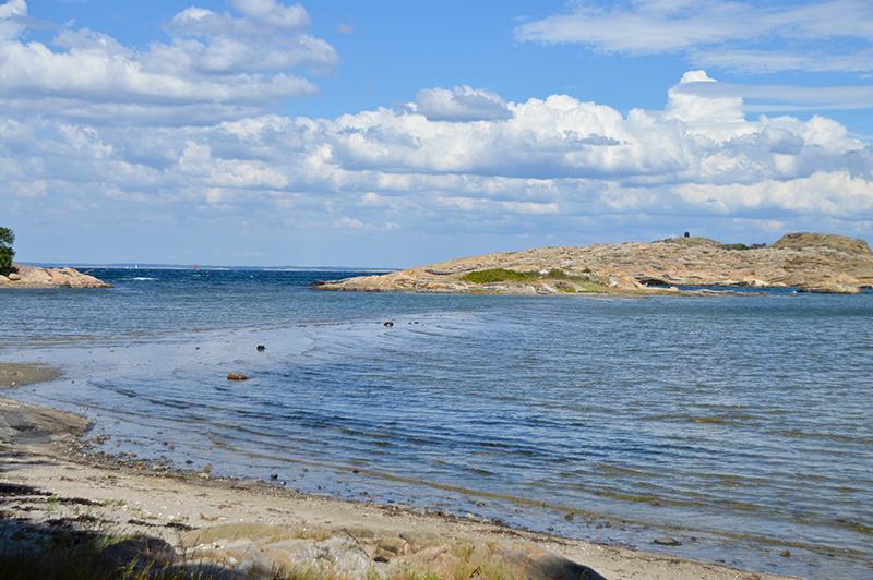 Kosterhavet national park sea