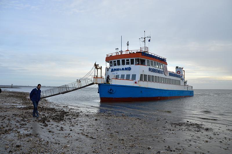 Robbentocht Ameland - robbenboot op de schelpenbank
