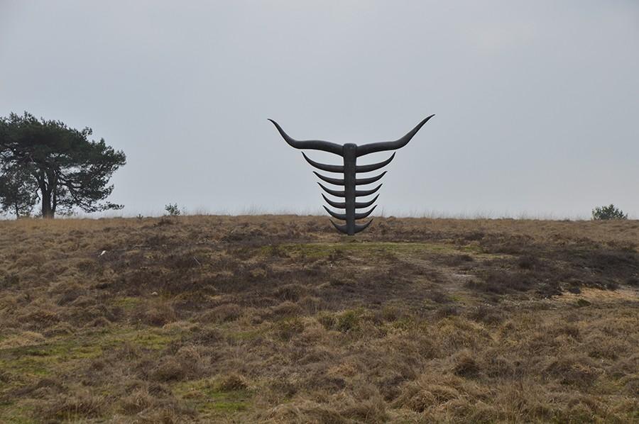 Wandelen in Nationaal Park Veluwezoom highlander