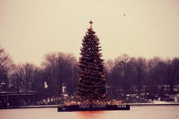Weihnachtsbaum auf der Binnenalster in Hamburg