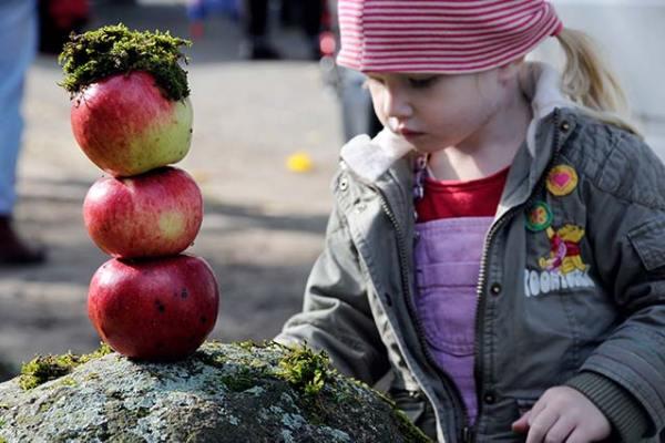 Wennerstorfer Apfeltag - Kind spielt mit Äpfeln. Foto: FLMK