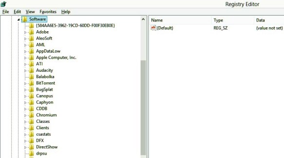 HKEY_CURRENT_USER\Software and delete the entries of the programs which are no longer installed on your PC.