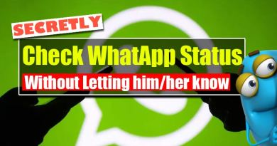 secretly and anonymously view anyone's WhatsApp status update