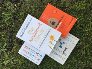 Post Election:  My 5 Favorite Parenting Books
