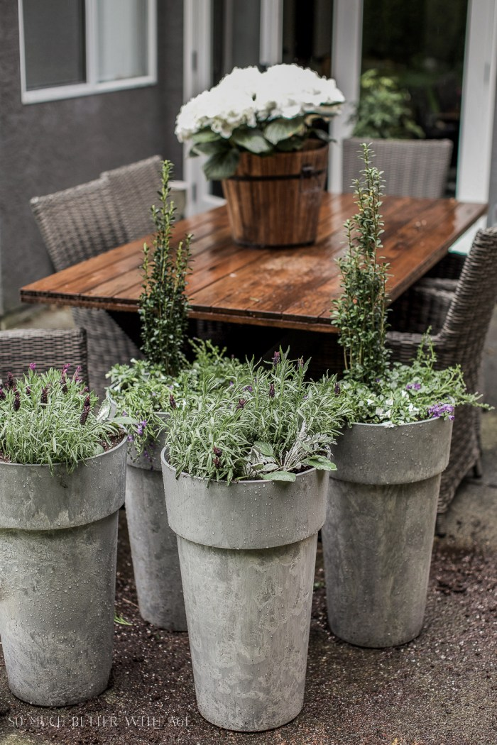 The Best Tip for Filling Large Outdoor Planters - So Much Better With Age