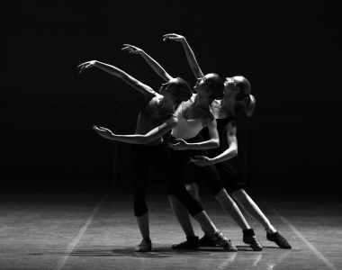 adult art ballerina ballet