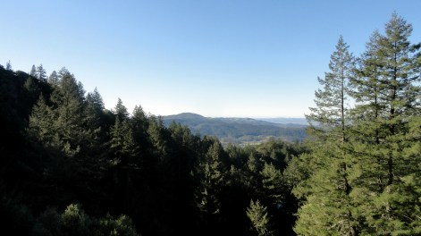 Sonoma County from Hood Mtn
