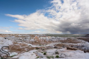 Blue Mesa Loop - Petrified Forest National Park