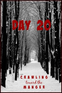crawling toward the manger daily20