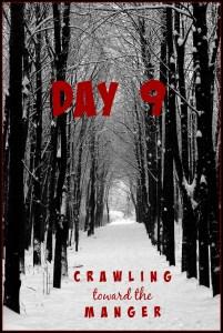 crawling toward the manger daily9