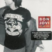 сингл It's My Life - Bon Jovi