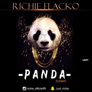 Richie Flako - Panda (Cover)