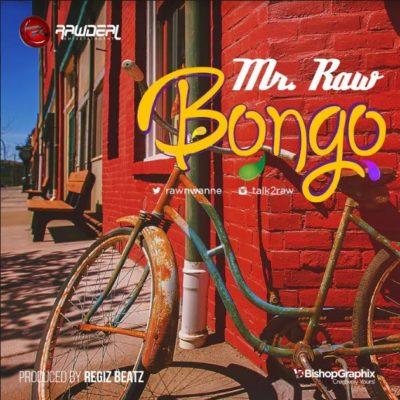 music-mr-raw-bongo