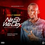 Shegzy Snoop - No So We Dey