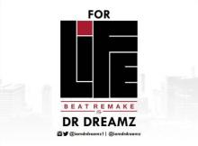 INSTRUMENTAL: Runtown - For Life (By DrDreamz)