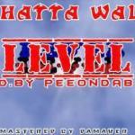 Music: Shatta Wale - Level