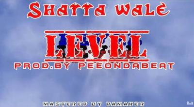 Music: Shatta Wale - Level
