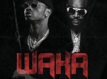 Lyrics: Diamond Platnumz - Waka ft. Rick Ross